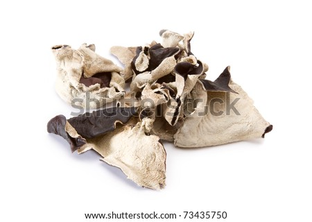 Dried woodear mushrooms on a white background. - stock photo