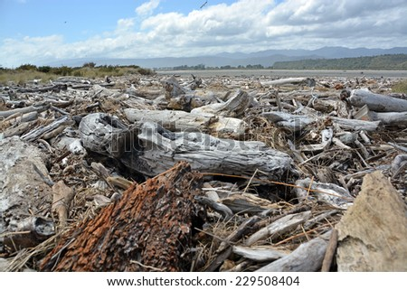 Drift wood piled up on Karamea Beach by violent storms on the West Coast of the South Island, New Zealand. - stock photo