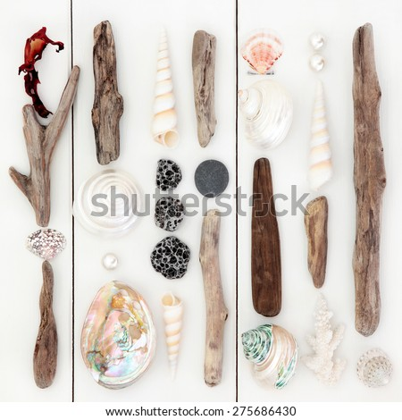 Driftwood and sea shell abstract design on wooden white background. - stock photo