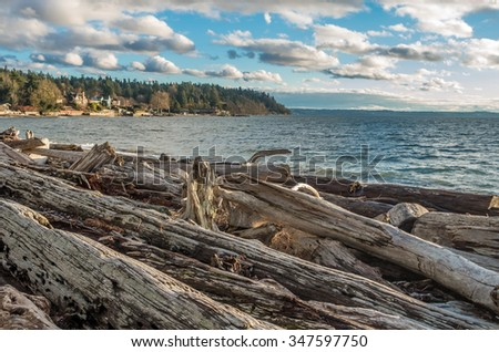 Driftwood logs litter the shoreline in Normandy Park, Washington. Wispy clouds hover above.