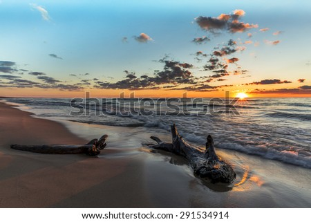 Driftwood on a Lake Huron Beach at Sunset - Grand Bend, Ontario, Canada - stock photo