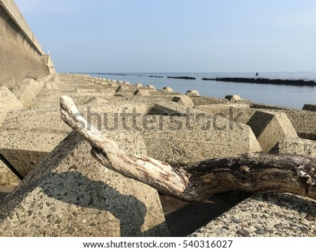 Driftwood on wave block