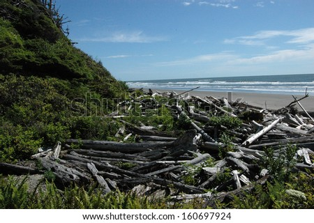 Driftwood piles up on a beach in Washington State's Olympic Peninsula.
