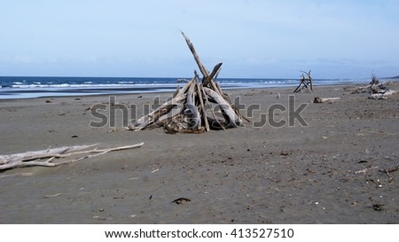 Driftwood structure on beach - stock photo
