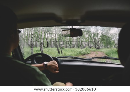 drive through the forest