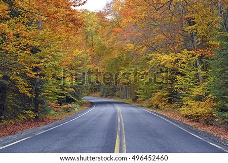 Driving in Autumn foliage with red, orange and yellow fall colors in a Northeast forest