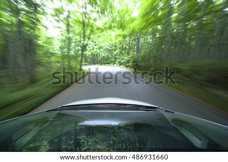 Driving  into forest