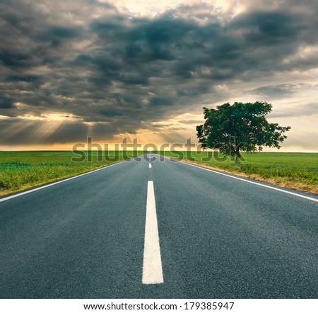 Driving on an empty asphalt road through the agricultural fields