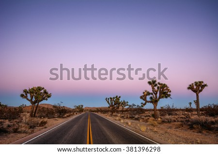 Driving through the desert, sparse trees along the road, during sunset - stock photo