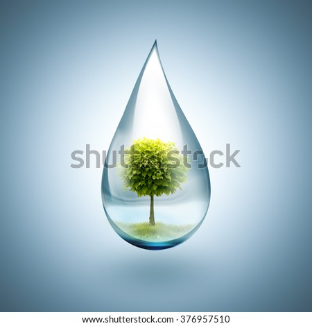 drop of water with tree inside - environmental concept - stock photo
