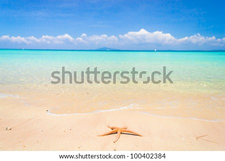 Dropped from Heaven On a Beach - stock photo