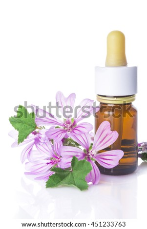 Dropper bottle with mallow malva extract or essential oil isolated on a white background