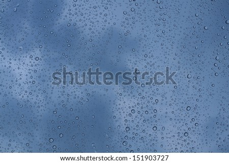 Drops of rain water.