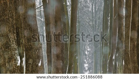 Drops of thawed snowflakes on the lens - stock photo