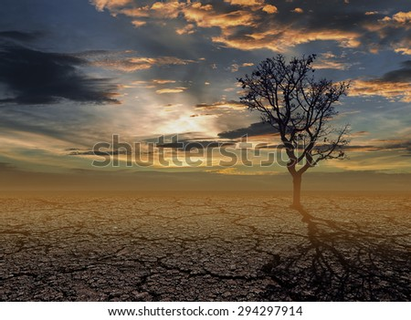 Drought caused by natural disasters. - stock photo