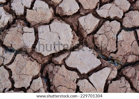 drought field, drought land - stock photo