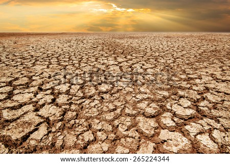 Drought land and cracked earth in sunrise with climate change and global warming
