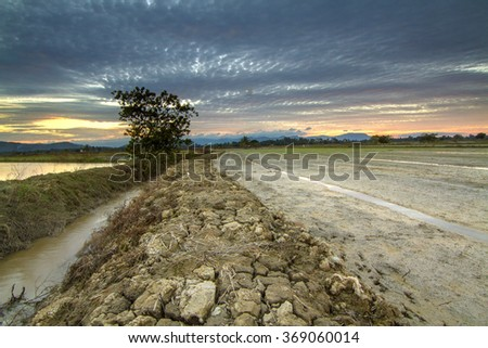 Drought land by the paddy field during beautiful sunset. Composition of nature - stock photo