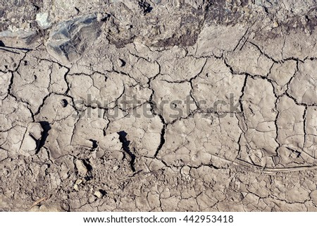 Drought land top view. Dry soil. Top view - stock photo