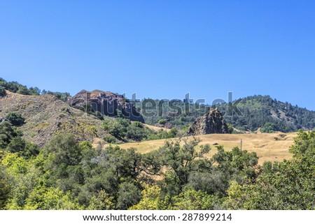 Drought stricken California black oak, golden grass, and blue sky, on the California Central Coast, near Hearst Castle and Cambria, CA. - stock photo