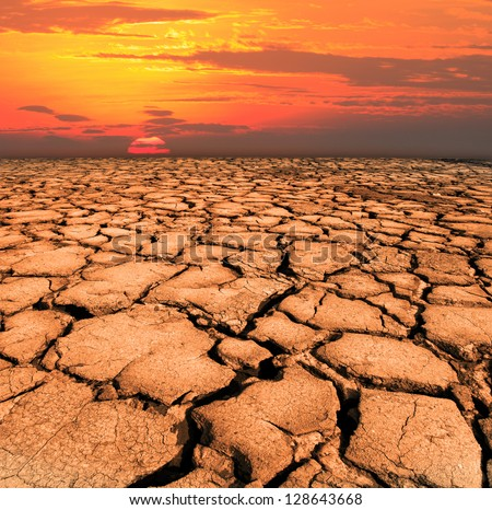 dry and cracked land from natural disaster scene - stock photo