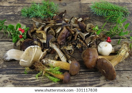 dry and fresh boletus on wooden plank  - stock photo