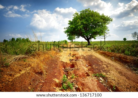 Dry and hot road into the field at the mountain - stock photo