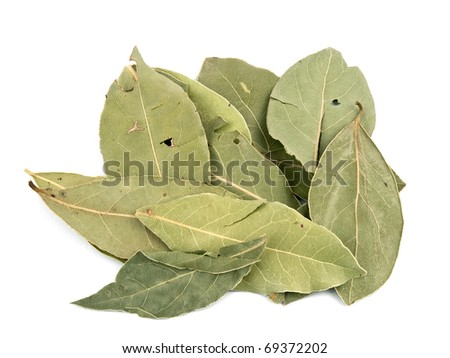 Dry aromatic bay leafs on white background - stock photo