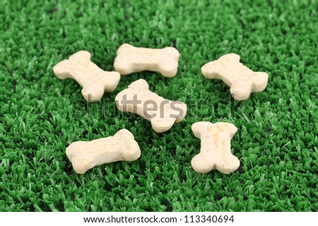 Dry bone-shaped food for dogs on green grass
