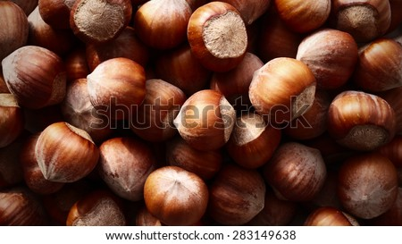 Dry brown hazel nuts background pattern. Texture. - stock photo