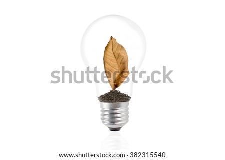 Dry brown leaf in a light bulb on the white background. - stock photo