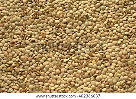 Dry brown lentils as a background