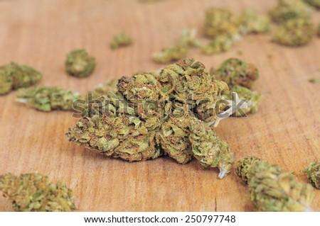 Dry cannabis bud - stock photo