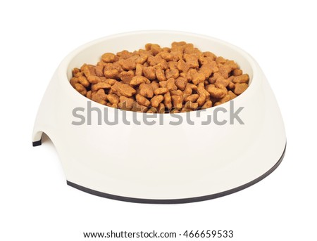 Dry Cat Food In White Bowl