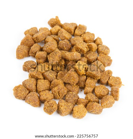 Dry cat food isolated on white