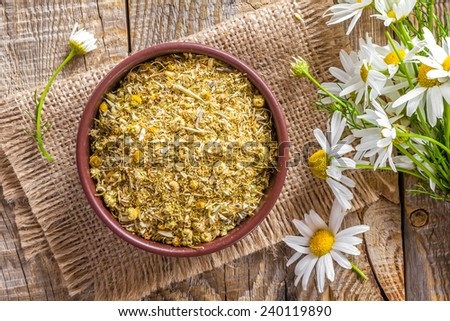 Dry chamomile - stock photo
