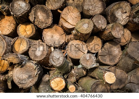 Dry chopped firewood logs stacked up in a pile - stock photo