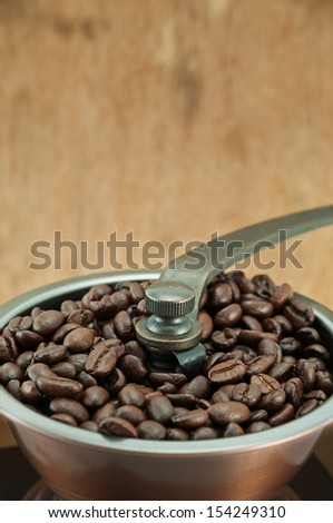 dry coffee beans in coffee grinder - stock photo