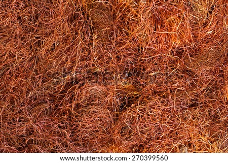Dry corn flowers for medical use. - stock photo