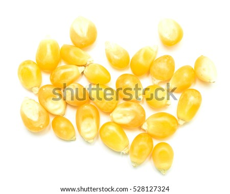 dry corn on a white background