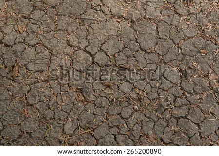Dry cracked background - stock photo
