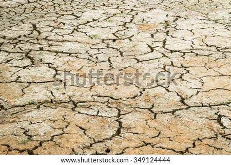 Dry cracked earth texture - stock photo