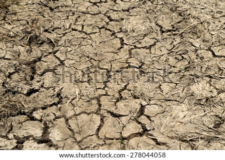 Dry cracked land soil in summer no rain. - stock photo