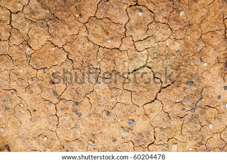 Dry cracked soil - stock photo