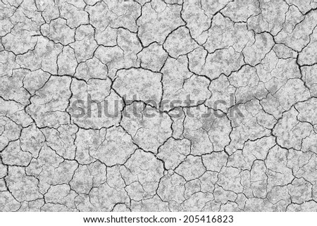 dry cracked soil texture and background on dry season (grayscale)