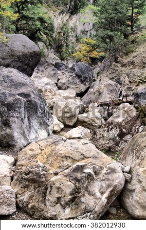 Dry Creek flows between large stones. Visible yellow forest.  - stock photo