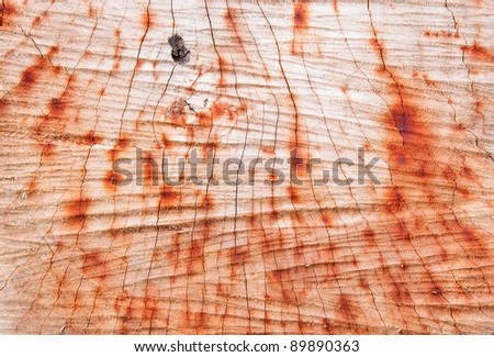 Dry cut wood pattern - stock photo