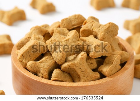 Dry dog food in a bowl - stock photo