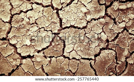 Dry earth background - stock photo