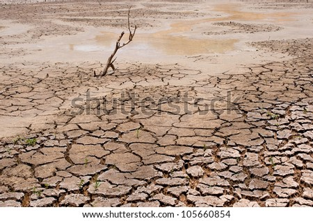 dry earth in the dry season in Thailand - stock photo